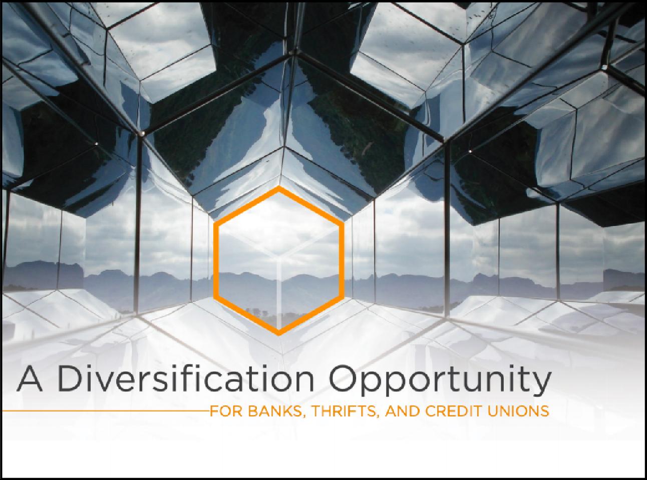 Diversification-03